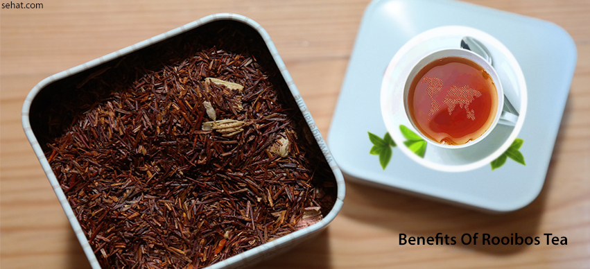 Rooibos Tea Benefits For Pregnancy, Weight Loss, Skin, Hair