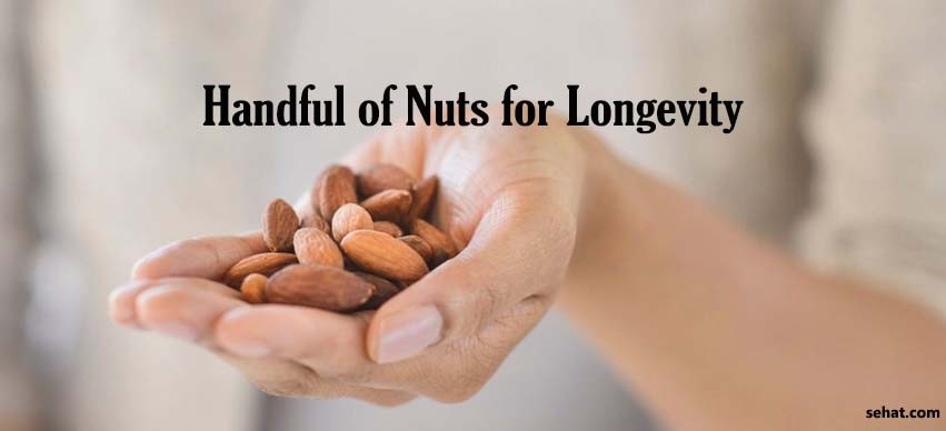 Handful of Nuts for Longevity