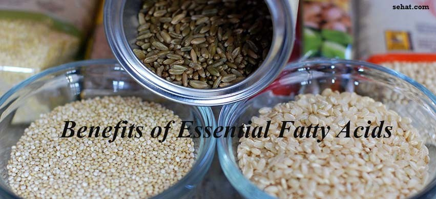 Benefits of Essential Fatty Acids