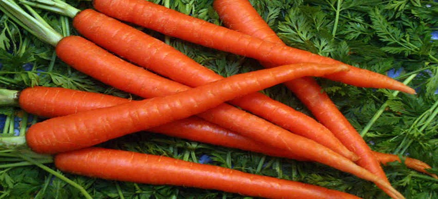 Carrots, Sweet Potatoes - Foods to improve your Eyesight