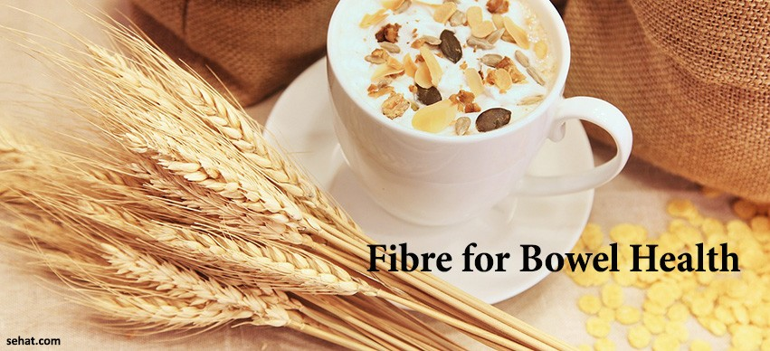 fibre for bowel health