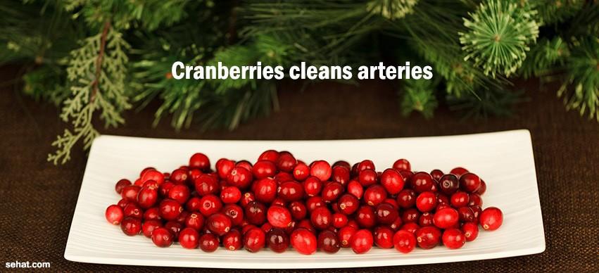 Cranberries cleans arteries