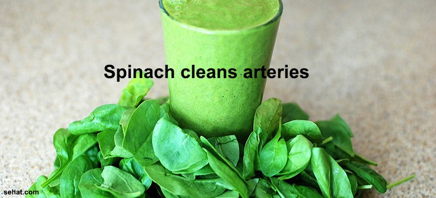 Spinach cleans arteries