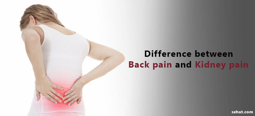 Difference Between Back Pain and Kidney Pain