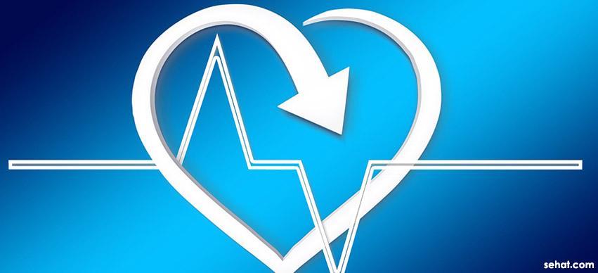 Spinach Healthy Cardiovascular System