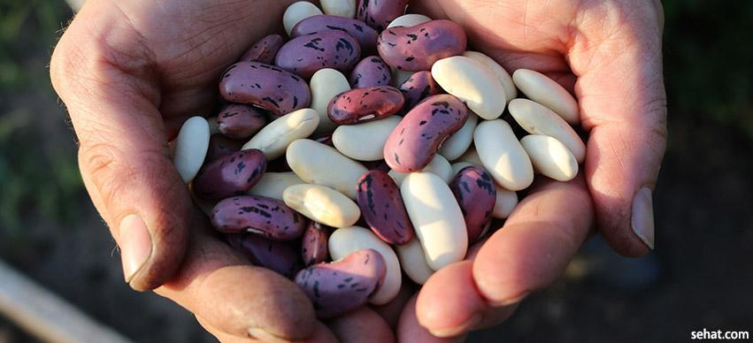 Legumes and beans TAVR diet
