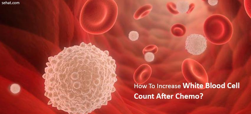 how to increase white blood cell count after chemo