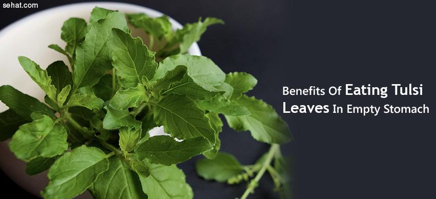 Benefits Of Eating Tulsi Leaves In Empty Stomach