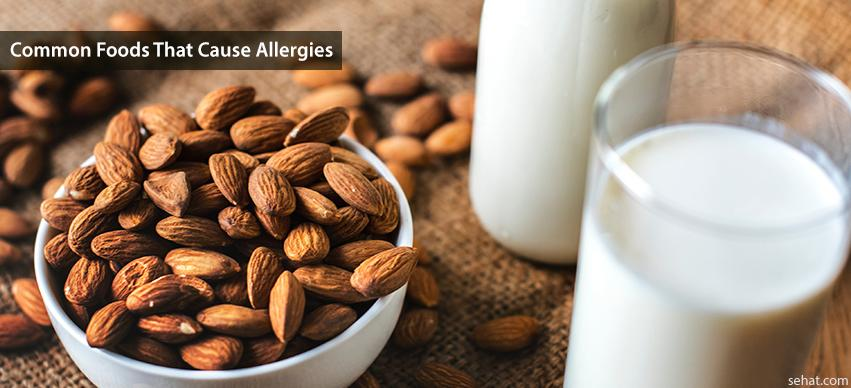 Common foods that cause allergies