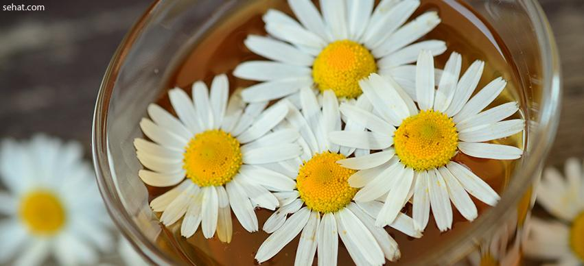Chamomile-Home remedy for skin itching in summer
