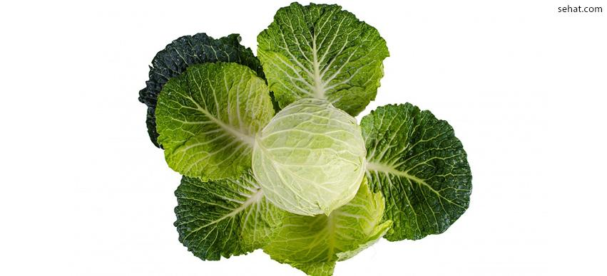Cabbage is a low calorie food for losing weight
