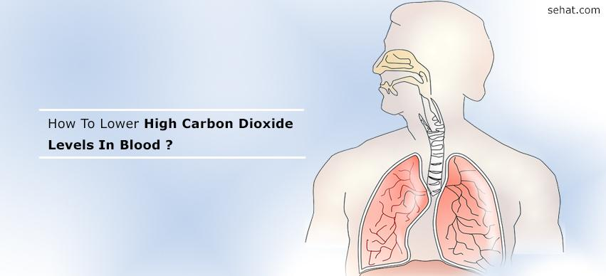How To Lower High Carbon Dioxide Levels In Blood
