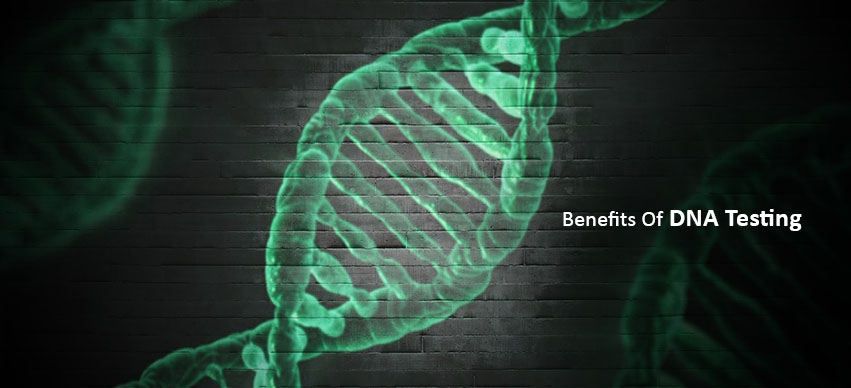 3 Benefits Of A DNA Test