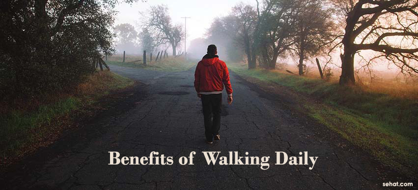 A Daily Walk is The Secret to Adding 7 Years to Your Life