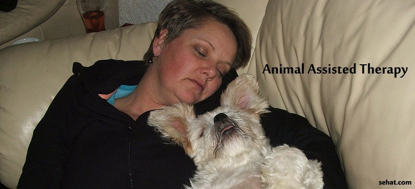 Animal Assisted Therapy: Curing with Love
