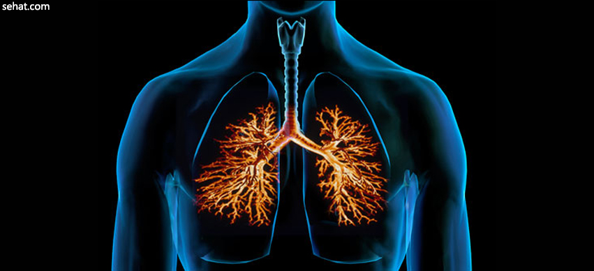 Bronchitis Symptoms and Signs