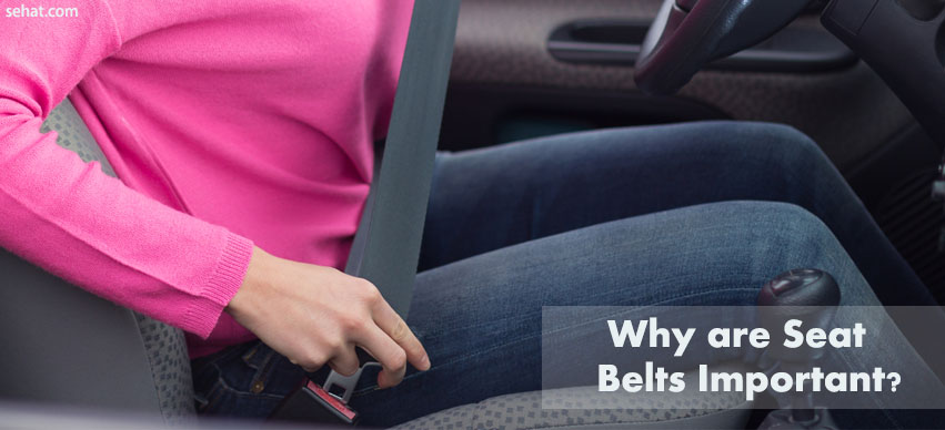 Why are Seat Belts Important