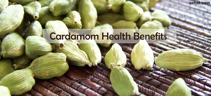 Best Cardamom Health Benefits