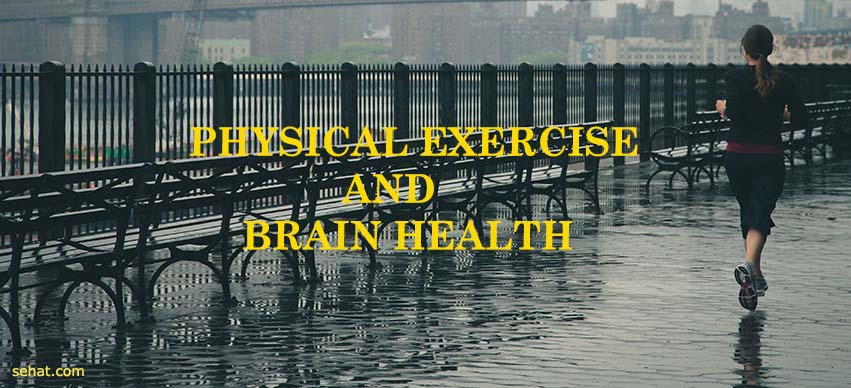 How Does Exercise Help Your Brain?