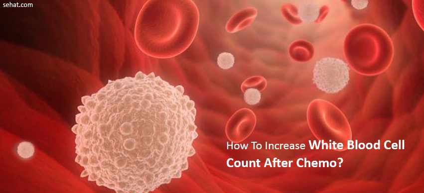 How To Increase White Blood Cell Count After Chemo?