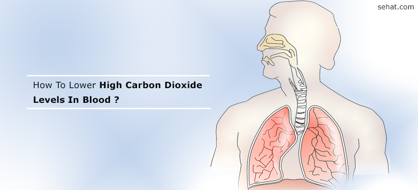 The Ultimate Guide to How To Lower High Carbon Dioxide Levels In Blood