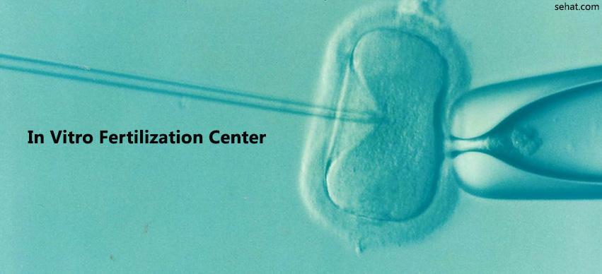 In Vitro Fertilization Center