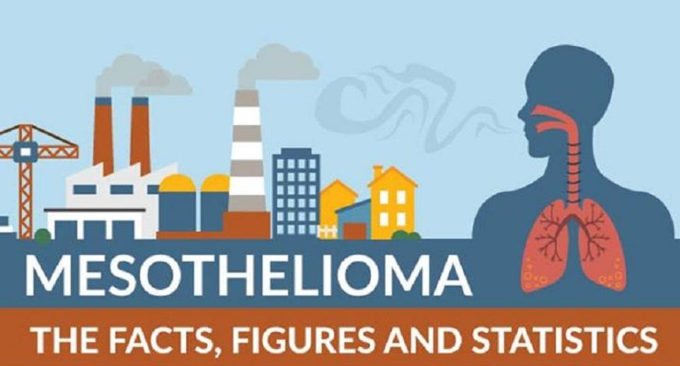 Mesothelioma Facts - Infographic