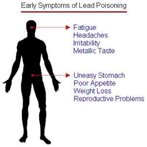 Nutrients That Can Reduce Lead Poisoning