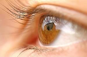 Top 10 Foods to improve your Eyesight