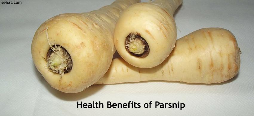 Top 5 Parsnip Health Benefits