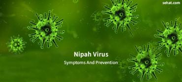 What Is Nipah Virus And How To Prevent It?