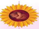Dream Flower IVF Centre