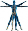 Dr. Rajhans Physiotherapy Clinic
