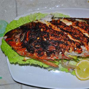 Eating more fish recommended for pregnant and breastfeeding women