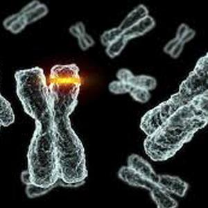 Gene-mutation not just affects the immediate offspring but also the future generations: