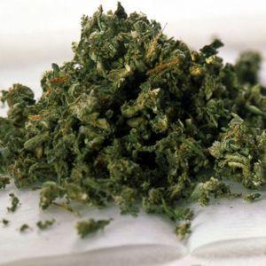 New study shows marijuana use can slow down cancerous tumor development