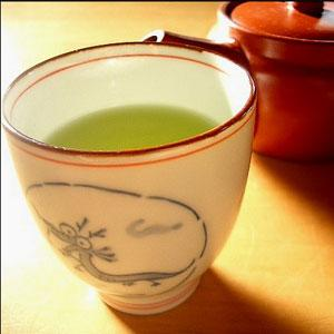 Researchers unveil the role of Green Tea in reducing the risk of Pancreatic Cancer