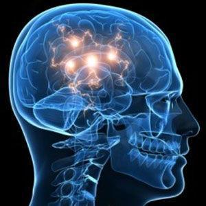 Speaking a second language delays dementia