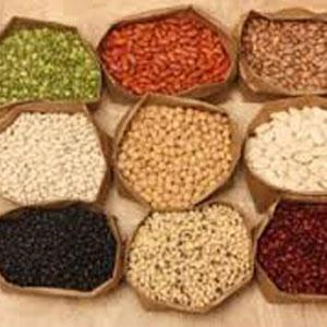 To cope with tendency to over eat, gorge on fiber rich foods hints new study